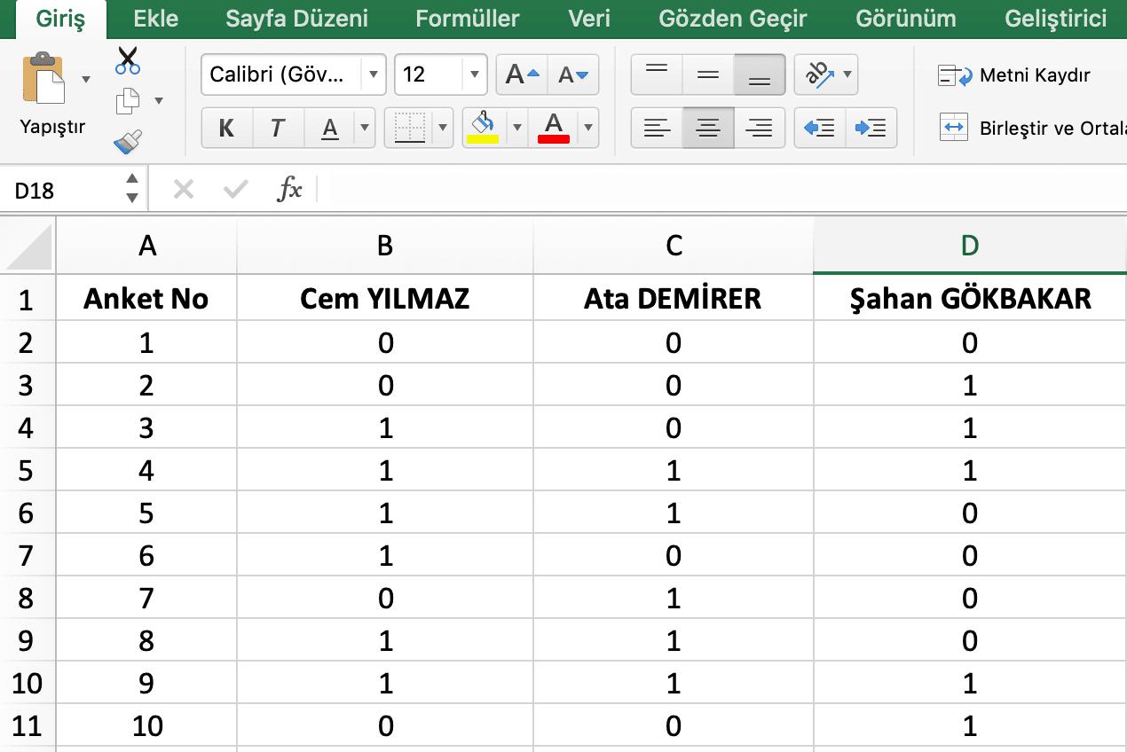excel anket veri girişi