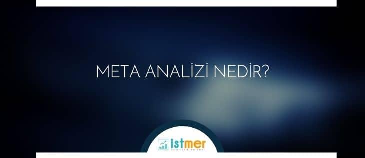 meta analizi nedir